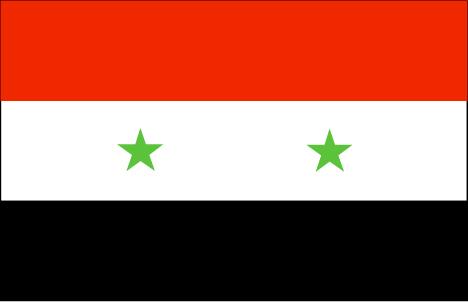 sy-lgflag.jpg