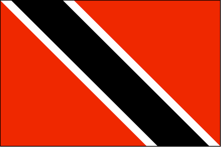 td-lgflag.jpg