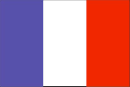 te-lgflag.jpg