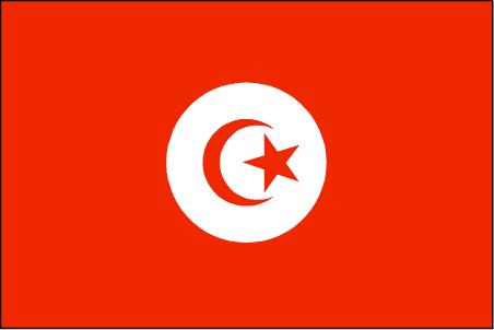 ts-lgflag.jpg