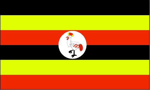 ug-lgflag.jpg