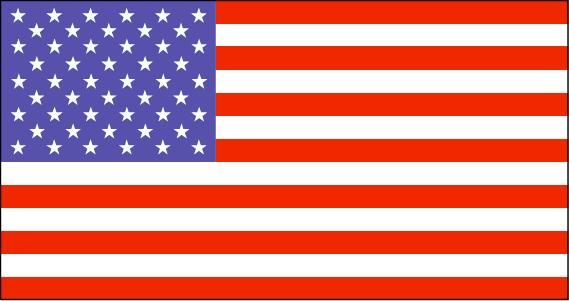 us-lgflag.jpg