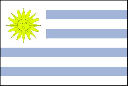 uy-lgflag.jpg