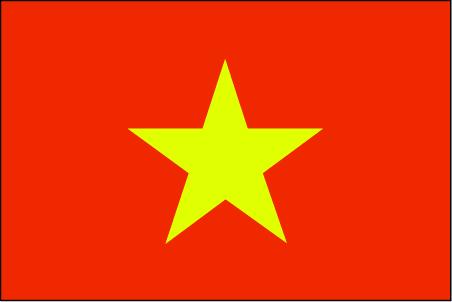 vm-lgflag.jpg