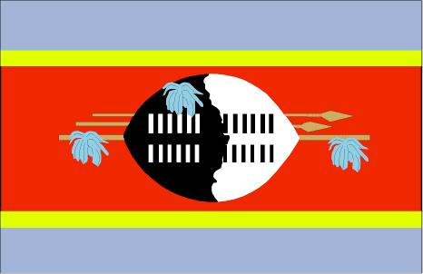 wz-lgflag.jpg