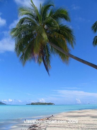 polynesia_6.jpg