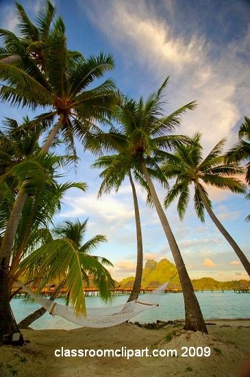 polynesia_8.jpg
