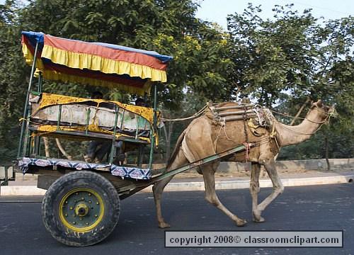 india1_250a.jpg