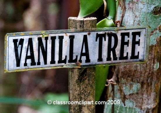 Bali_7127.jpg