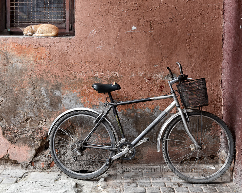 cat-sitting-in-window-old-bicycle-in-the-souks-Marrakesh-Morocco-6630A-2.jpg