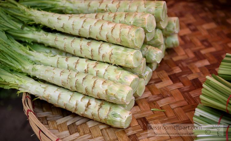 asian-green-choy-vegetable-6822ASE.jpg
