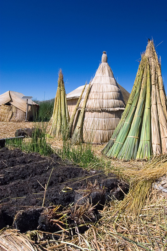 Traditional-reed-huts-Lake-Titicaca-Photo-116.jpg