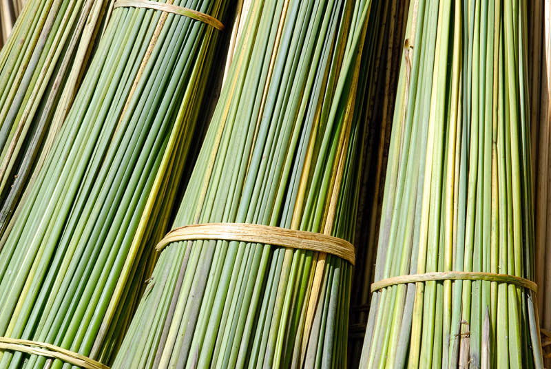 close-up-of-bundled-reeds-2545A.jpg