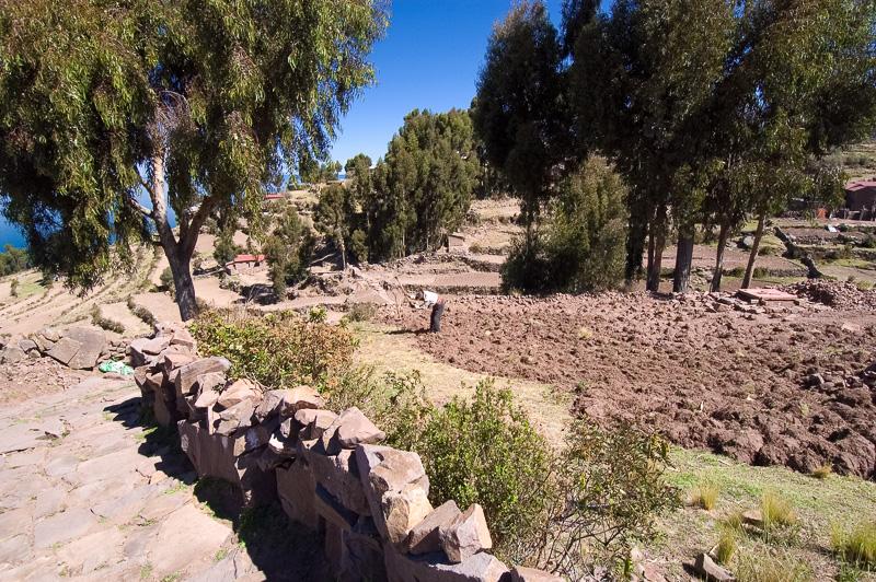 titicaca-134.jpg