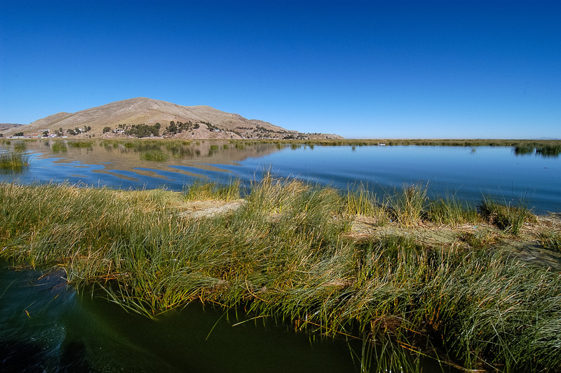 tortora-reeds-Lake-Titicaca-Photo-0016A.jpg