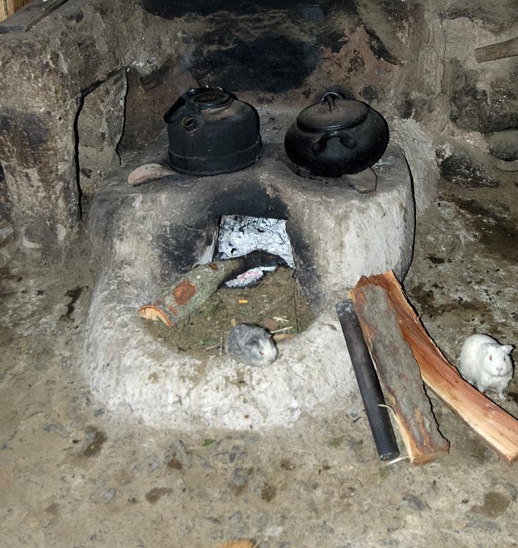 Cooking-utensils-in-Peruvian-home-in-Ollantaytambo_009.jpg