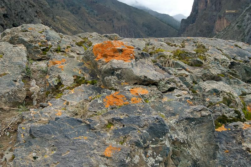 Inca-Fortress-of-Ollantaytambo_011.jpg