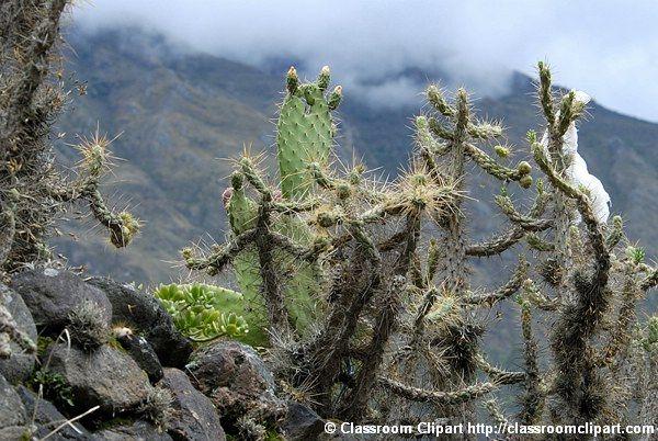 Peru_21_001.jpg
