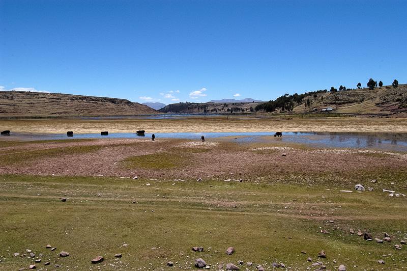 Lake-Umayo-near-Puno-in-Peru-Photo-001.jpg