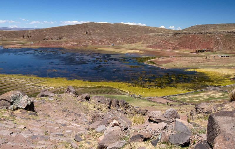 Lake-Umayo-near-Puno-in-Peru-Photo-016.jpg
