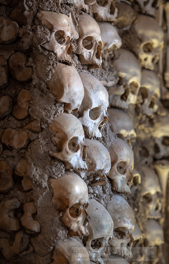 closeup-rows-of-skulls-evora-portugal.jpg