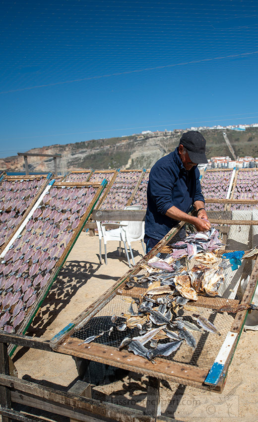 man-drying-fish-on-the-beach-in-nazare-portugal.jpg