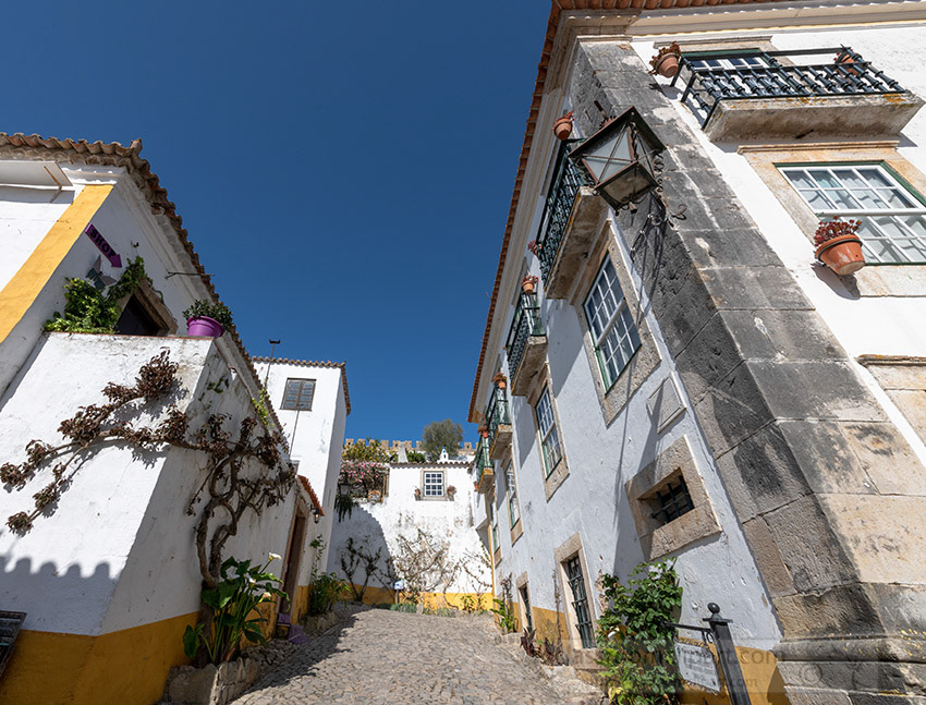 vines-on-exterior-white-washed-walls-home-obidos-portugal_8504040.jpg