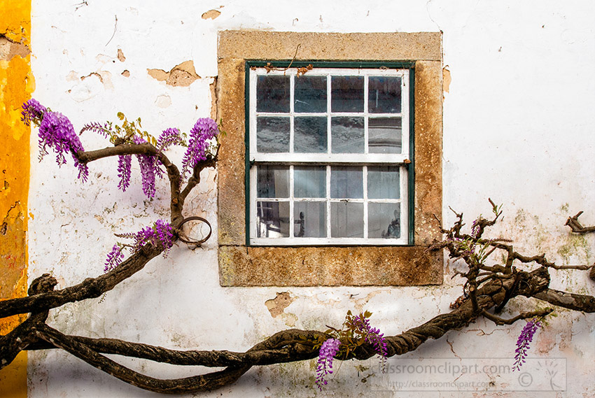 white-washed-building-cobble-stone-street-obidos-portugal-2.jpg