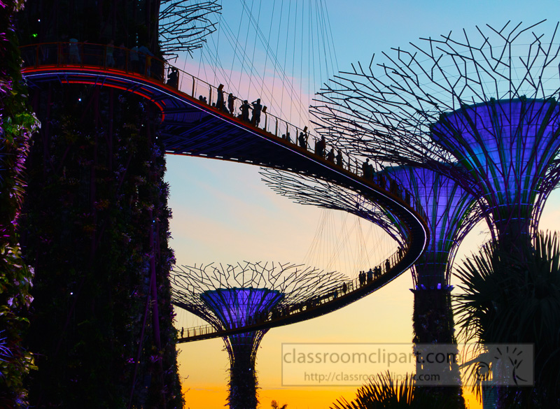supergroove-trees-at-the-light-show-of-gardens-by-the-bay-singapore-DSC03451.jpg