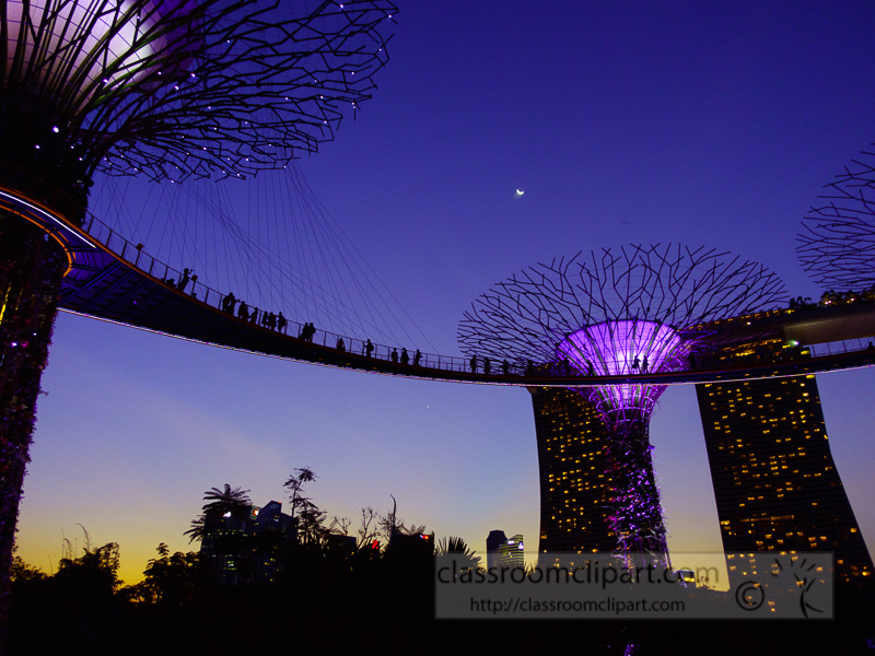 supergroove-trees-at-the-light-show-of-gardens-by-the-bay-singapore-DSC03475.jpg