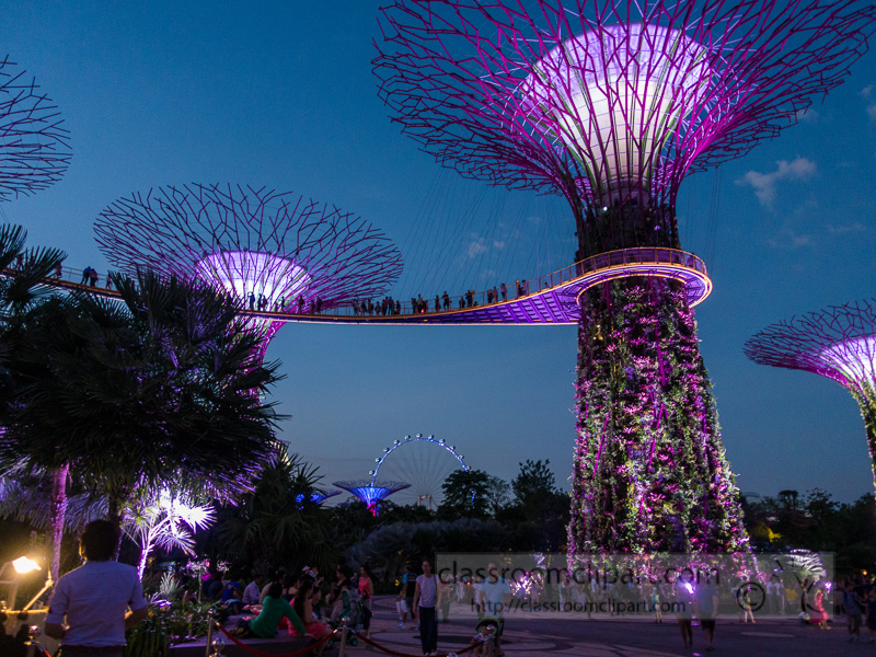 supergroove-trees-at-the-light-show-of-gardens-by-the-bay-singapore-DSC03479.jpg