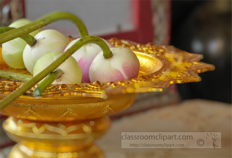 lotus-flowers-on-gold-plate-used-for-offering-at-royal-temple-thailand-254.jpg