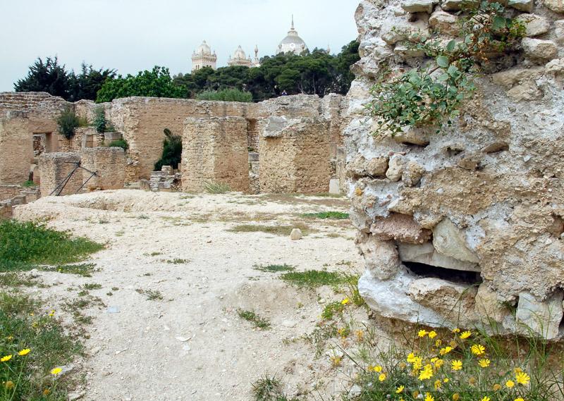 carthage-tunisia_180a.jpg