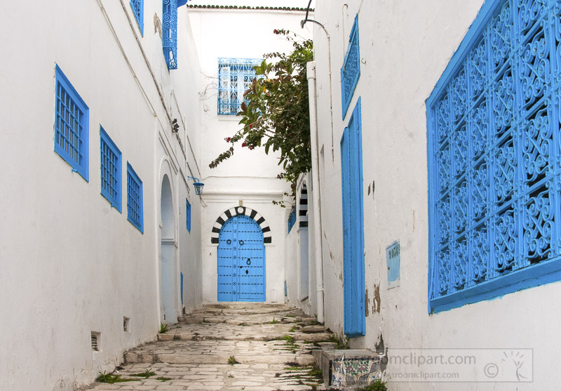 white-and-blue-colored-houses-in-the-town-of-sidi-bou-said-tunisia-photo-image-026.jpg