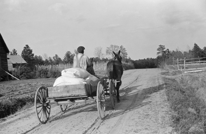 bringing-home-meal-from-cooperative-grist-mill-gees-bend-alabama-1939.jpg