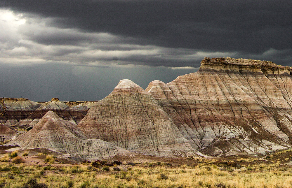 arizona-petrified-forest-along-old-hwy-180-during-the-monsoon.jpg