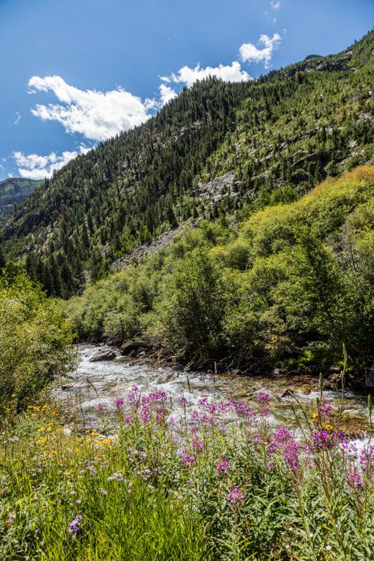 rocky-mountains-colorado.jpg