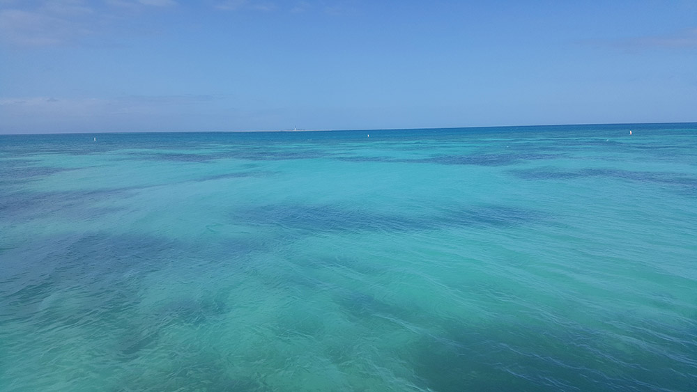gulf-of-mexico-in-the-park-dry-tortugas.jpg