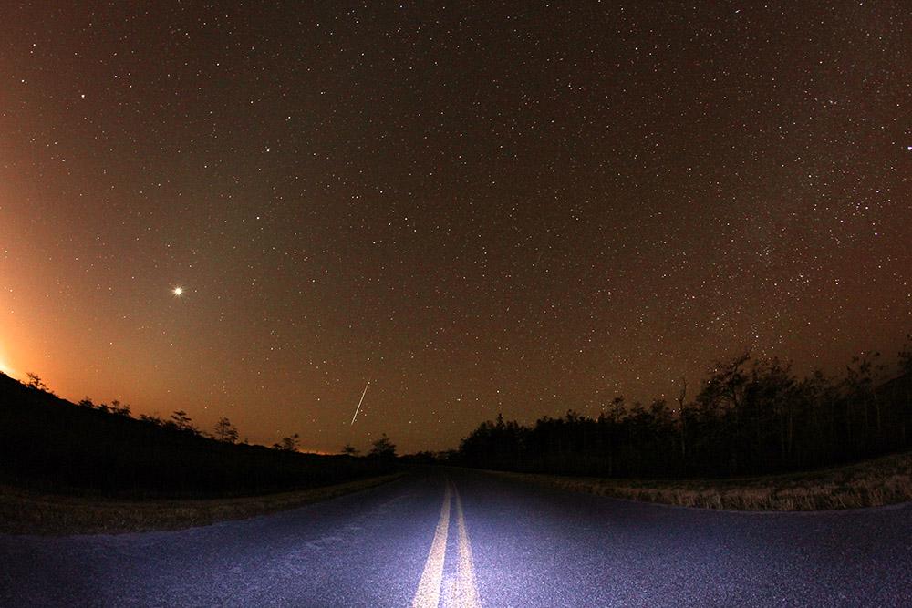 stars-in-the-park-everglades-florida.jpg