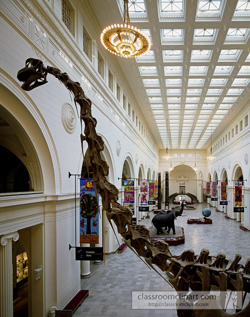 field_natural_history_museum_interior_with_dinosaur.jpg
