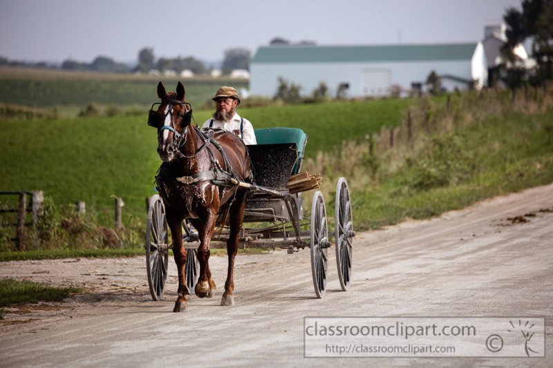 photo-amish-man-riding-in-his-horsecart-on-a-country-road.jpg