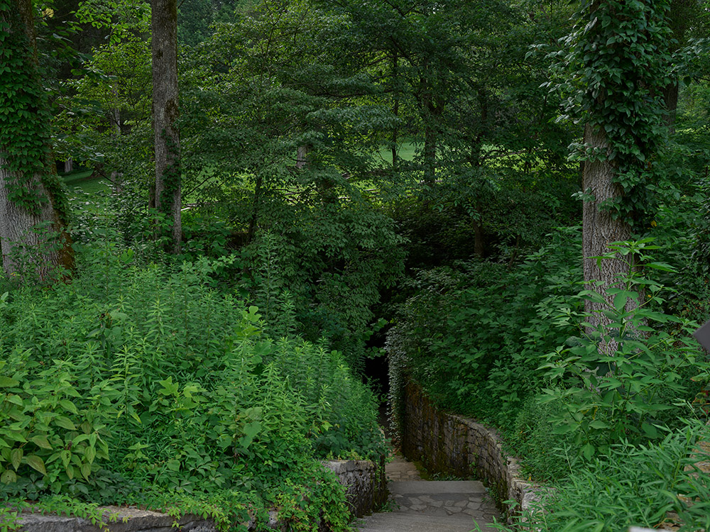 stairway-through-the-woods-at-the-lincoln-birthplace-site-in-hodgenville-kentucky.jpg