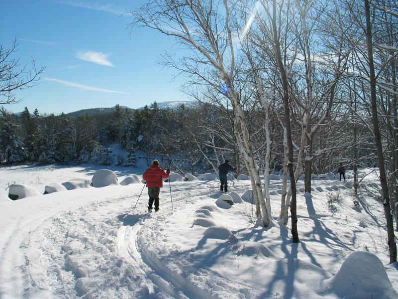 miane_snow.jpg