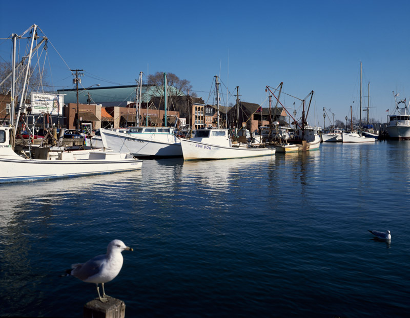 photo-harbor-at-annapolis-marylands.jpg