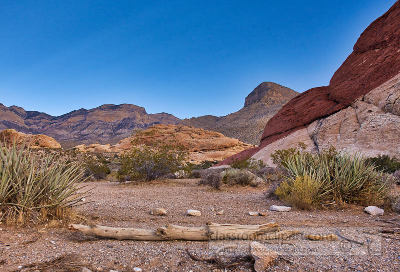 red-rock-canyon-mojave-desert-nevada-2892.jpg
