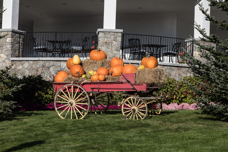 photo-wagon-filled-pumpkins--wentworth-by-the-sea-historic-hotel-in-new-castle-new-hampshire-next-to-portsmouth.jpg