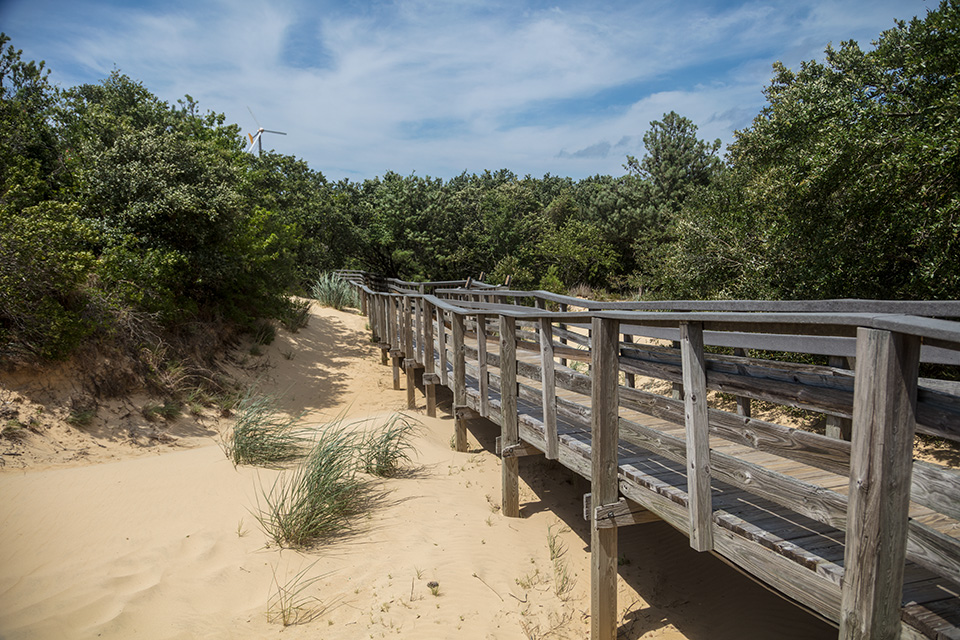 boardwalk-leading-to-the-great-dune-in-nags-head-a-community-north-carolinas-outer-banks.jpg