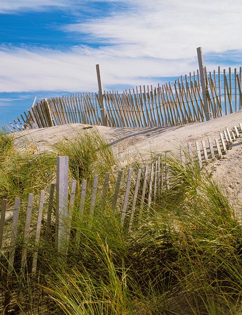 dunes-and-fence-cape-hatteras-north-carolina.jpg