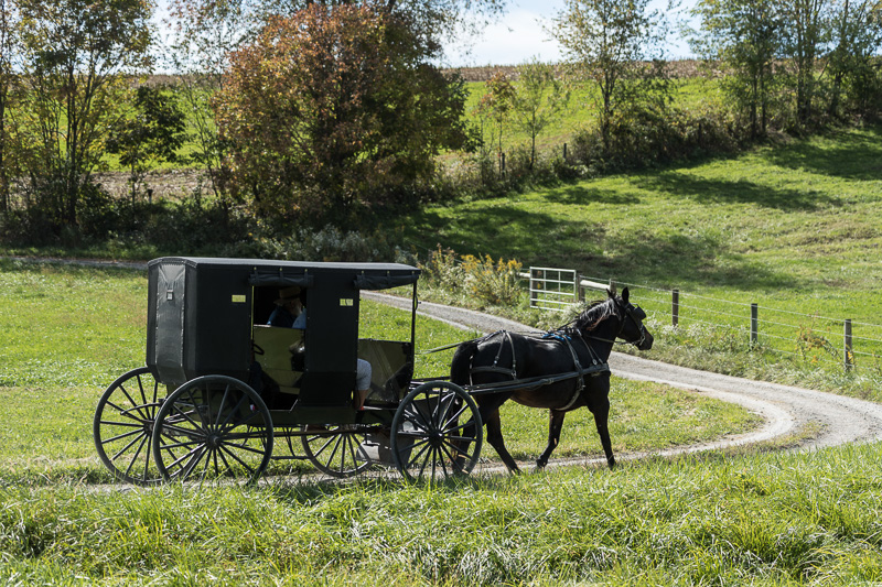 an-amish-horse-buggy-and-rider-or-riders-clip-clop-down-a-country-road.jpg