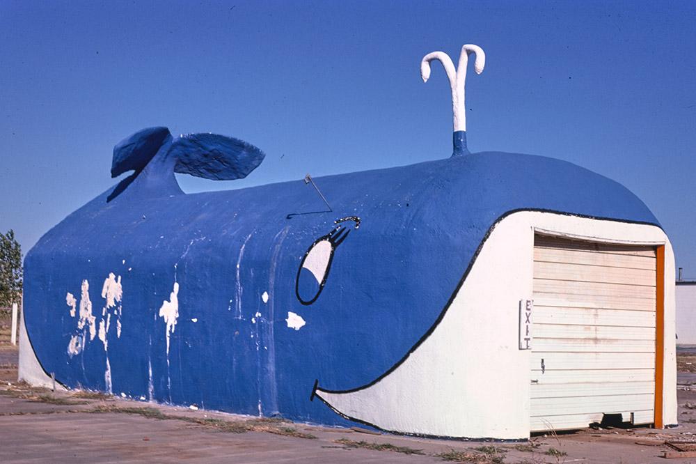 whale-car-wash-oklahoma-city-oklahoma.jpg